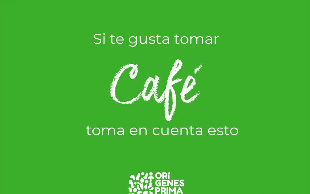 Si te gusta tomar café toma en cuenta estos consejos